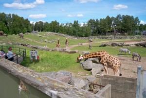 hotell nära Borås Djurpark
